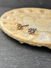 Ammonite ear studs - Arborea Jewellery
