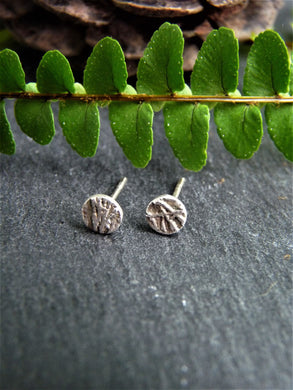 Branch texture ear studs - Arborea Jewellery
