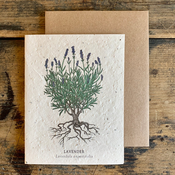 Plantable Wildflower Seed Paper Card - Various