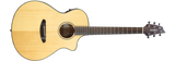 Breedlove Discovery Concert CE - Natural