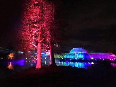 Kew Christmas Lights