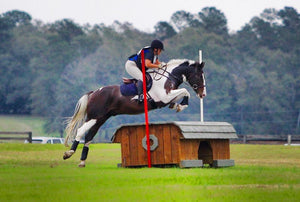 Aiken Tack Exchange: THE Consignment Store For Horse People  – Aiken