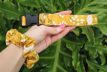 Woodland Dog Collars
