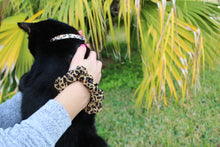 Jaguar Print Cat Collars