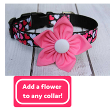 Hearts on Black Nylon Dog Collar