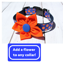 Florida Gator Polka Dot Dog Collar