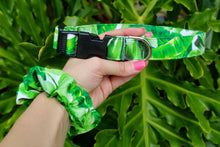Monstera Leaf Dog Collar
