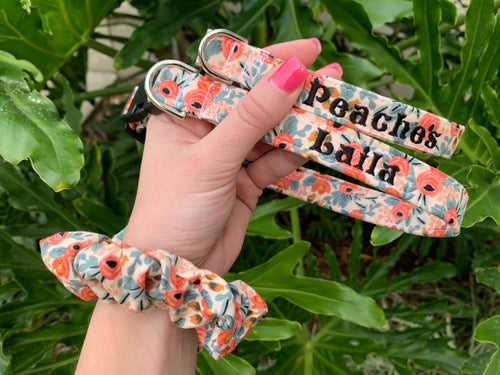 Coral Rifle Paper Co. Dog Collar