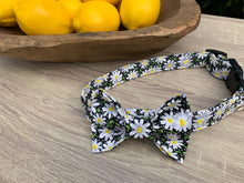 Black Daisy Dog Collar