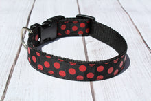 Georgia Bulldog Polka Dot Dog Collar