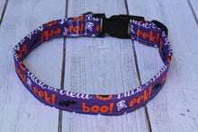 Spooky Words Dog Collar