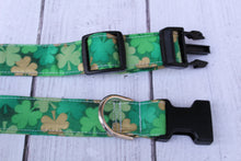 Golden Shamrocks Dog Collar