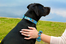 Wildflower Pickin' (Blue) Dog Collar