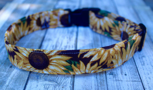 Sunflowers (Large) Dog Collar
