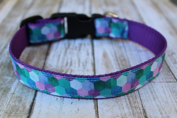 Peacock Love Dog Collar