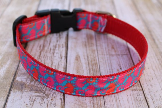 Lilly Inspired Sea Horse Dog Collar