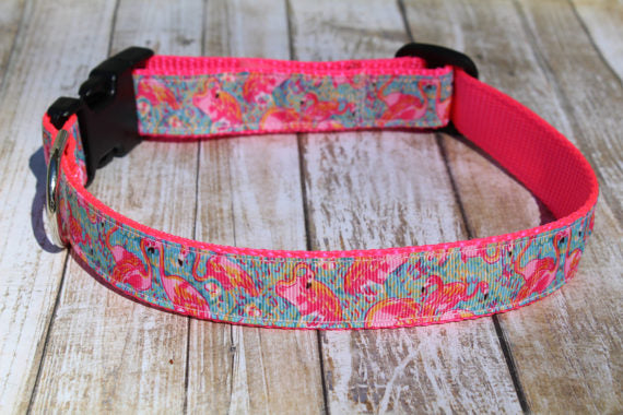 Flamingo Lilly Inspired Dog Collar