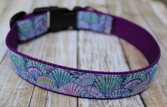 Lilly Inspired SeaShell Dog Collar
