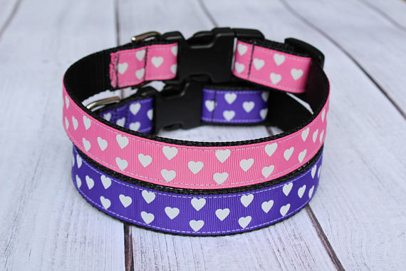 Hearts on Nylon Dog Collar