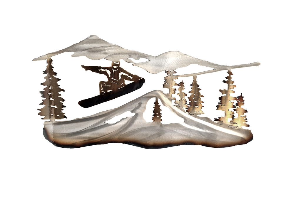 Snowboarder  Metal Wall Art