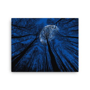 Nigh Sky Canvas