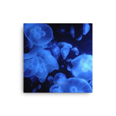 Image of Jellyfish Canvas - CalvinMade