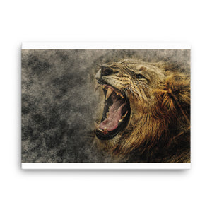Lion Canvas
