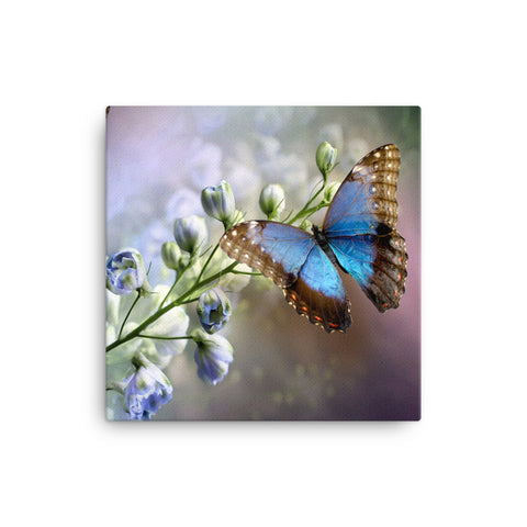 Image of Butterfly Canvas