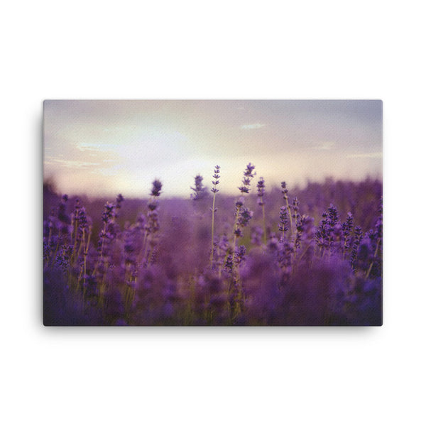 blooming blossoms Canvas - CalvinMade