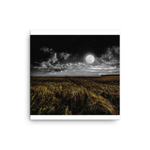 Moon Field Canvas - CalvinMade