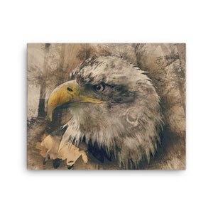 Bald Eagle Canvas