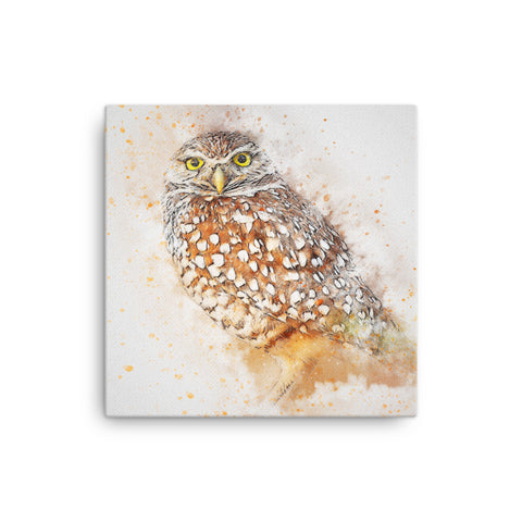 Image of Owl Canvas
