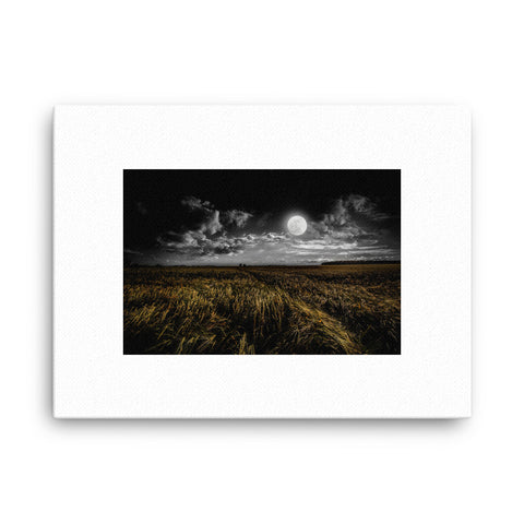 Image of Moon Field Canvas - CalvinMade