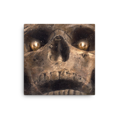 Image of Skull Canvas