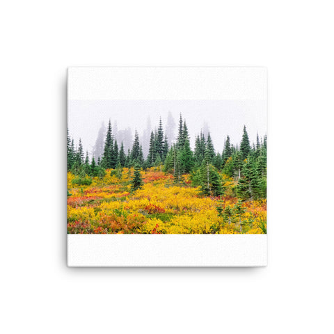 Image of Yellow Fields Canvas - CalvinMade