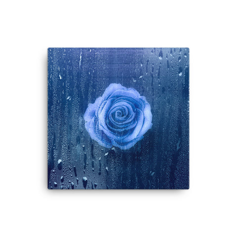 Image of Rose Canvas - CalvinMade