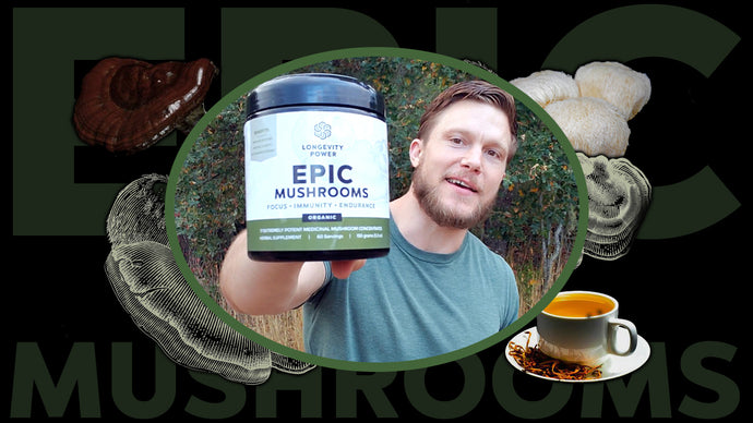 Which Medicinal Mushrooms are EPIC?