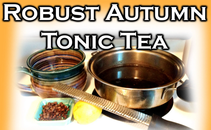 The Ultimate Blueprint Recipe for the Biohacker's Daily Pumpkin Spice Tea