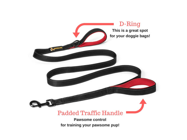 Pawfessor Dion's 6ft Reflective Double Handle Traffic Dog Leash