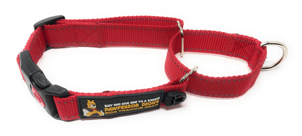 Pawfessor Dion's Reflective Nylon Martingale Training Collar