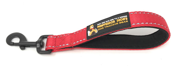 Pawfessor Dion's Short Reflective Traffic Leash 10""