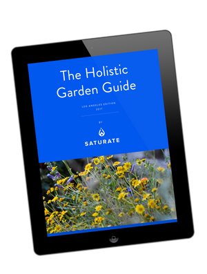 The Holistic Garden Guide
