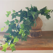 Artificial English Ivy Kokedama by Coastal Flair