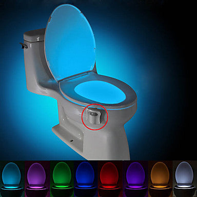 Toilet Light - Motion Activated