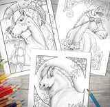 Horse Lovers Coloring Book Collection Plus Journal - Top Brook