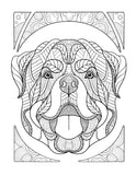 Adult Coloring Book Dogs: Relaxing Stress Relieving Designs Amazing Dogs To Color: Dogs and Puppies Coloring Book For Grown Ups - Top Brook