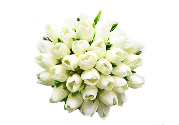 Stemple Real Touch Artificial Flowers White Tulips by the stem . Great prices, free domestic shipping.