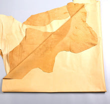 Passion Junetree pig leather hideL - pig skin about 7 SF - yellow Colors