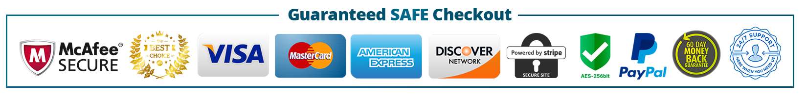 Image result for guaranteed safe checkout badge