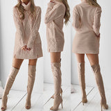 Adorable Turtle Neck Sweater Dress